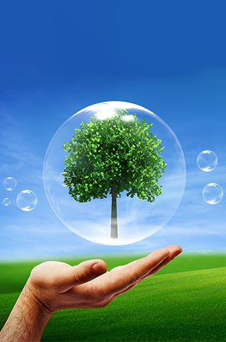 environmentally friendly green cleaning agents green cleaning